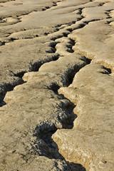 Dried mud waves from Mud Volcanoes Buzau Romania