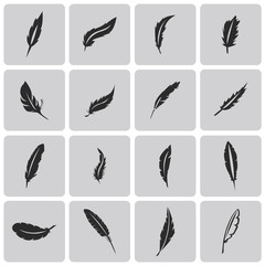 Vector black feather Black icons set3. Vector Illustration eps10
