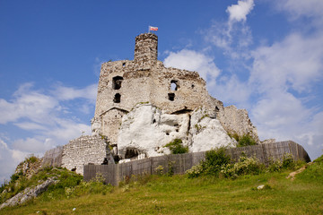 The ruins of the castle in Mirow. Poland