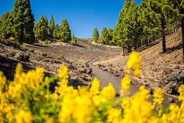 Mountains landscape, volcanic island La Palma