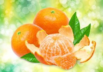Mandarins on bright, green background