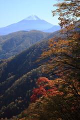 秋の丸山林道