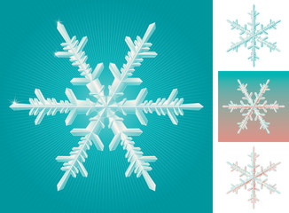 set of snowflakes isolated and on different backgrounds