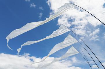 kite flags