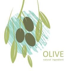 Olive. Natural ingredient.