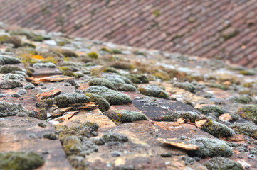 ancienne toiture en tuiles plates abîmée