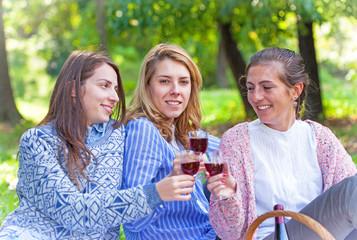 Three girlfriends drinking wine in nature
