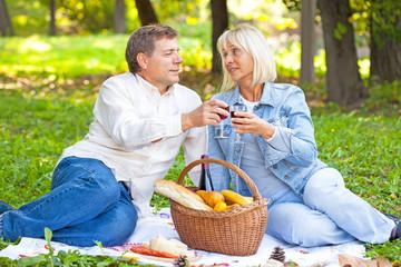 Senior couple on a picnic