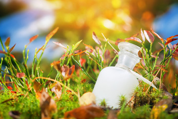 Natural medicine or cosmetics. Bottle on the moss.