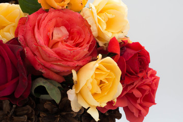 Roses in a basket of cones