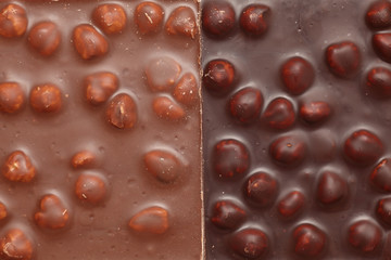 Milk and Dark Chocolate with nuts