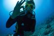 canvas print picture - Scuba Diver