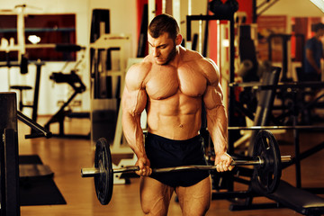 bodybuilder training gym, standing barbell curl