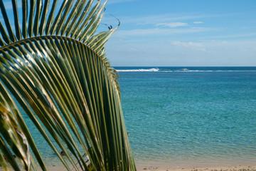 plage paradisiaque et barrière de corail