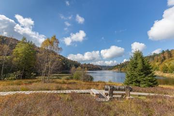 banc au bord du lac