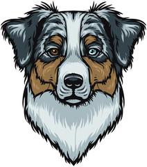 Vector Australian Shepherd Dog