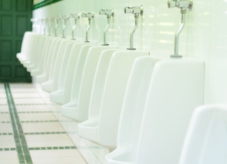 Bowl urinals