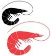 Shrimp - 71224964