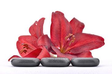 Mokre kamienie bazaltowe z liliami