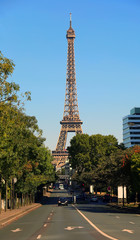 View on Eiffel Tower and urban street in Paris, France