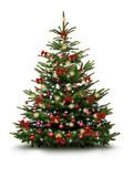 Christbaum mit Roten Kugeln, Schleifen, und Strohsternen