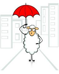 Овца в городе