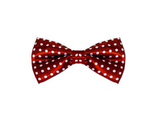 Neck tie bow polka dot