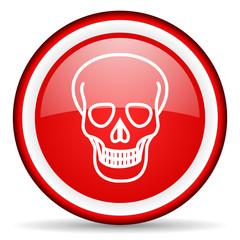 skull web icon