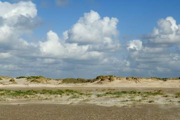 Duene, Strand, Roemoe, Daenemark,