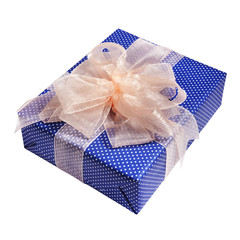 Xmas blue gift packing