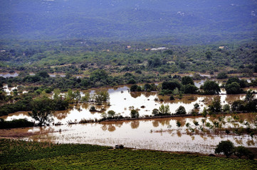 Country landscape flooded after heavy rains