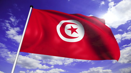 flag of Tunisia with fabric structure against a cloudy sky