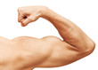 Strong male arm shows biceps. Close-up photo isolated on white - 71241722