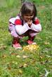 so viele Pilze gefunden