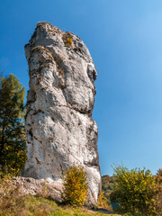 Maczuga Herkulesa, Poland