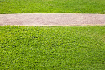 Green grass and paved lane in the park