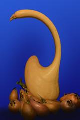 Zucca e nespole - deformazione