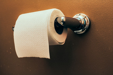 Toilet Paper Roll on Wall 3