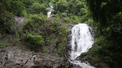 Waterfall in the tropical jungle falls off a cliff into the pond