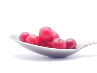 cranberries and spoon on a white background