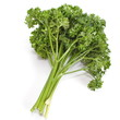 Bunch of fresh green curly parsley isolated on white background