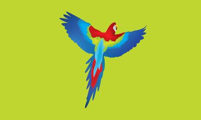 Papağan 2