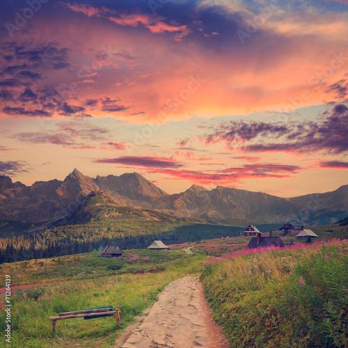 Gasienicowa Valley in Tatra Mountains, vintage look - 71264139