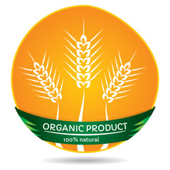 Organic plants, wheat label illustration