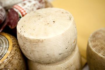 Forma di formaggio italiano pecorino al mercato