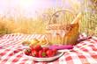 canvas print picture - picknick im freien