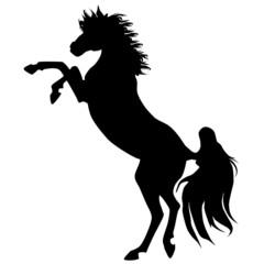 Black horse silhouette 15 (vector)