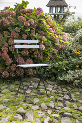 one chair in the garden