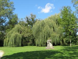Cher - Mehun-sur-Yèvre - Le Parc et ses saules pleureurs