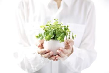 植物を持つ女性